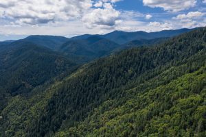 Explore the best hiking spots in Ashland, Oregon